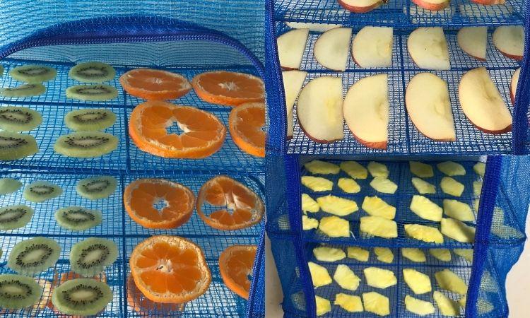 干しネットに並べたみかんやキウイ、りんご、パイナップルの画像